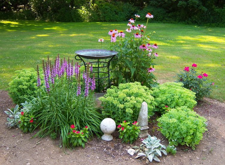 Landscape Gardening: Know What You Are Looking for